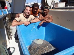 relâcher Cm par pêcheur à La Réunion crédit Ciccione 171115