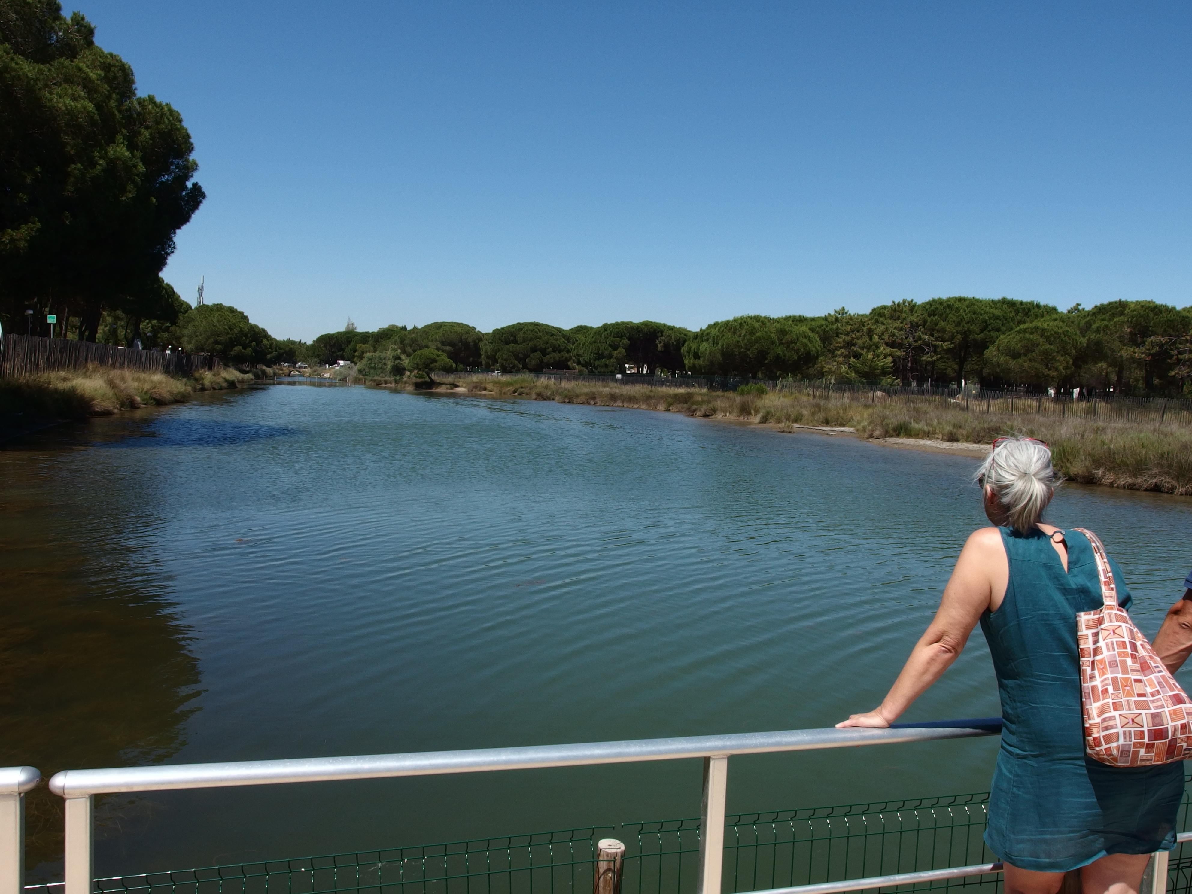 le grau d'une lagune de la Grande Motte est réservé à la réhabilitation des tortues marines avant leur relâcher